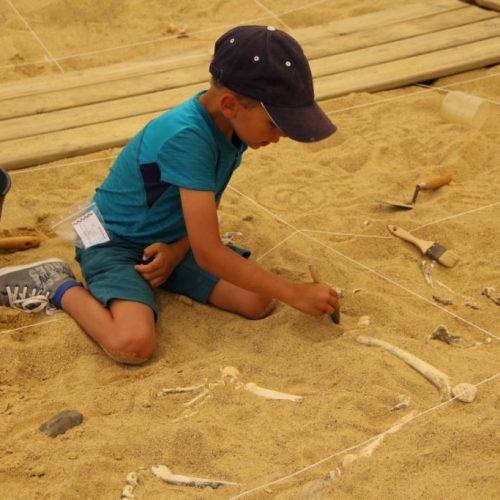 Initiation à la fouille archéologique dans le parc