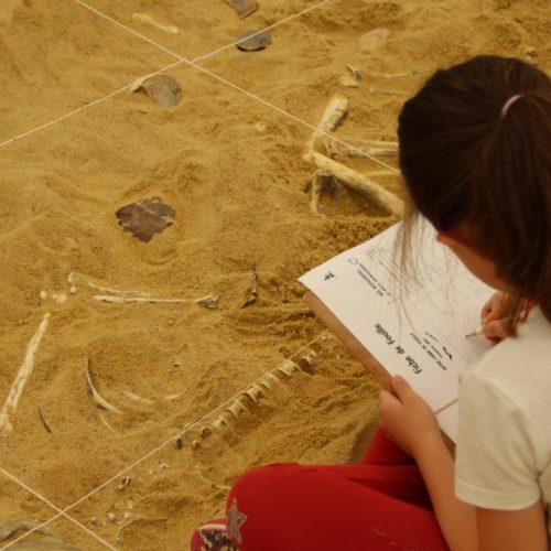 Atelier d'initiation à la fouille archéologique