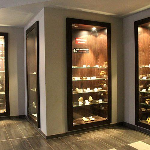Collections archéologique présentées dans le hall du Paléosite